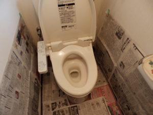 トイレ室内に養生をする