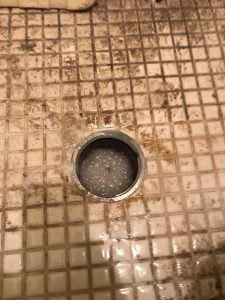 多古町M様宅浴室つまり除去画像