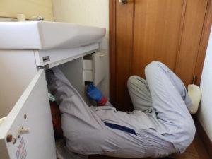 洗面台下からのぞき込む